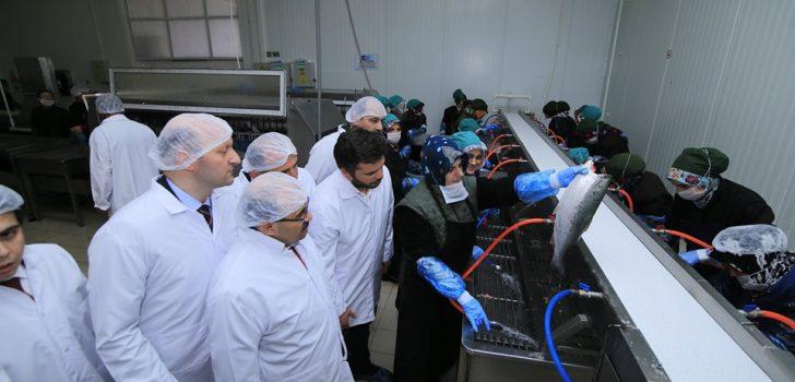 Vali Ustaoğlu Arsin OSB'deki Su ürünleri Fabrikasını Ziyaret Etti