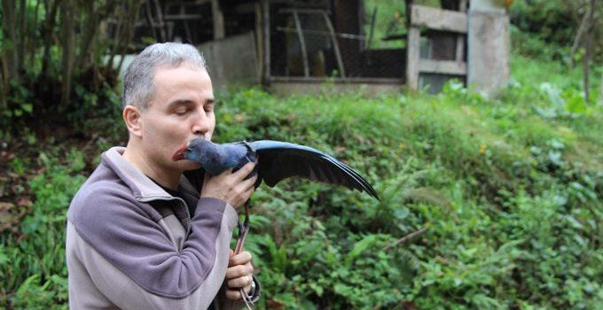 Trabzon'da vatandaşlar buldu – Nesli tükeniyor