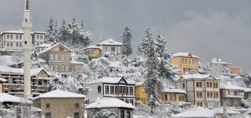 Trabzon'da kar yağışı