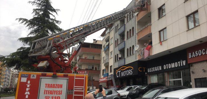 Trabzon'da karga ve kedi mahsur kaldıkları yerlerden itfaiye ekiplerince kurtarıldı