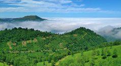 Trabzon yaylaları ziyaretçilerini ağırlamaya hazırlanıyor