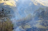 Maçka'da ormanlık alana sıçrayan yangın kontrol altına alındı