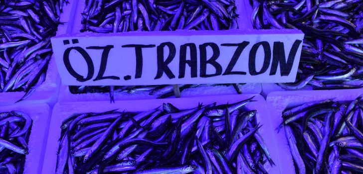 Yerelden verilsin lütfen Trabzon'da yılın son gününde balık tezgahlarında yoğunluk yaşandı