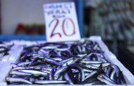 Karadeniz'de hamsi avının kısmen durdurulması Trabzon'da balığın fiyatını artırdı