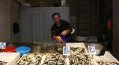 Karadeniz'de avlanan yeni sezonun ilk hamsileri tezgahlarda yerini aldı