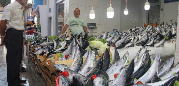 Trabzon'da balık tezgahları şenlendi