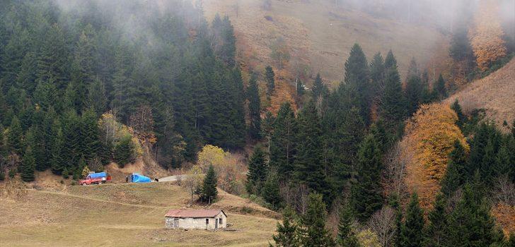 Doğu Karadeniz'de bu yıl hedef yerli turist