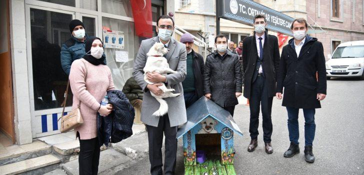 Trabzon'da sahibini hastane önünde beklemesiyle haberlere konu olan köpek için kulübe hazırlandı