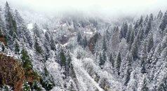 Trabzon'un yüksek kesimleri beyaza büründü