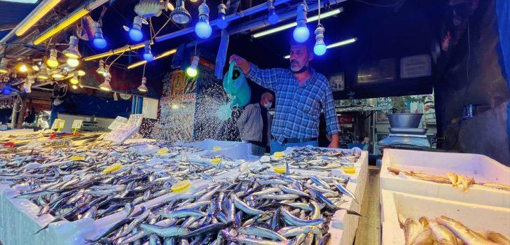 Trabzon'da kilogramı 10 liradan satılan hamsi balıkçı ve tüketiciyi mutlu etti