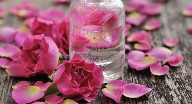 """""""Güller diyarı"""" ülkenin gül suyu ihtiyacını karşılıyor"""